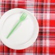 Picnic. plate on the tablecloth — 图库照片
