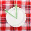 Picnic. plate on the tablecloth — Stock Photo #10794280