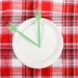 Stock Photo: Picnic. plate on the tablecloth