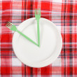 Picnic. plate on the tablecloth — Stock Photo #10794358