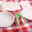 Picnic. plate on the tablecloth — Stock Photo #10794421