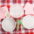 Picnic. plate on the tablecloth — Stock Photo #10794435
