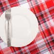 Picnic. plate on the tablecloth - Stock Photo
