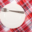 Picnic. plate on the tablecloth — Stock Photo #10794480