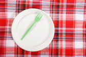 Picnic. plate on the tablecloth — Stock Photo