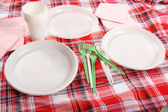 Picnic. plate on the tablecloth — Stok fotoğraf