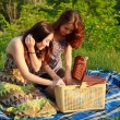 Two beautiful girls at a picnic — Stock Photo #10829520