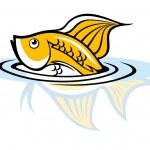 Постер, плакат: Aquarium fish