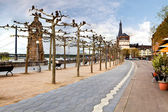 View on embankment of the Rhine river, Dusseldorf — Stock Photo