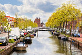 Street of Haarlem, Holland — Stock Photo