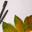 Background with autumn leaves and pen in notebook — Stock Photo #10942709