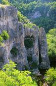 岩石和植被的百万美元峡谷 — 图库照片