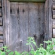 Shabby Door of Abandoned Barn — Stock Photo
