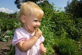 Baby eats peas 4873 — Stock Photo