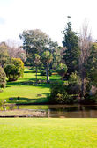 Melbourne Botanical Gardens — Stock Photo