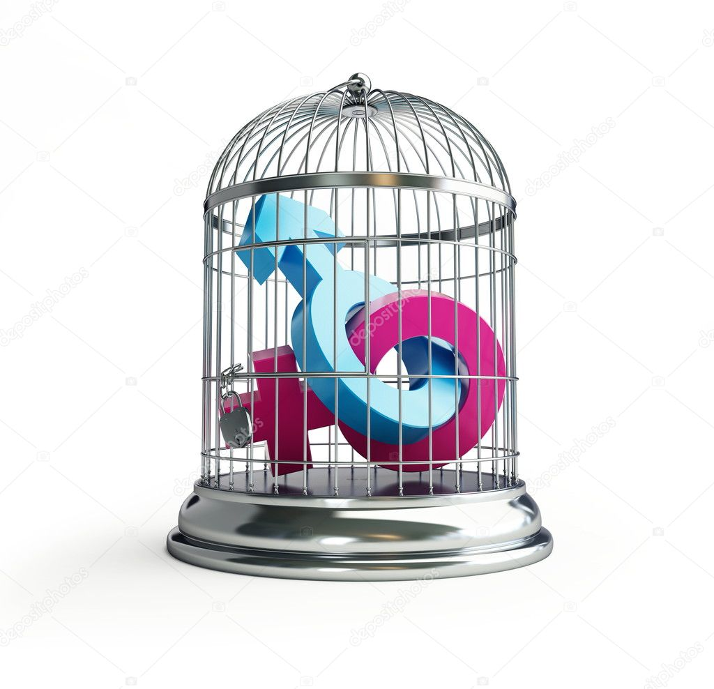 Cage for birds man and women isolated on a white background  Stock Photo #11588996