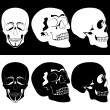 Monochrome skull — Stock Vector