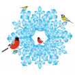 Bullfinch and tits on a snowflake - Stock Vector