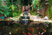 Decorative pond — Stock Photo