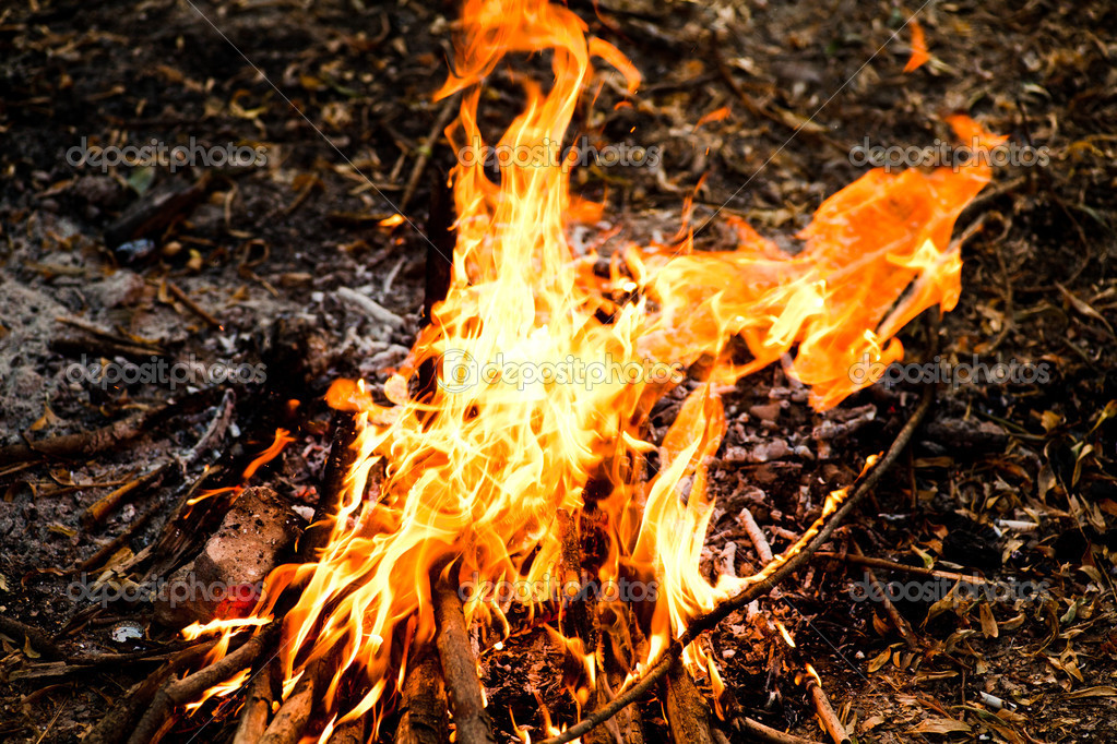 Fire background  Stock Photo #11385541