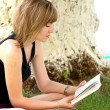 Lovely girl reading the book - Stock Photo
