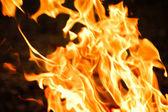 Zblízka plamenů ohně — Stock fotografie