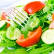 Fresh salad with tomatoes, rucola and cucumbers — Stock Photo #11074326