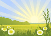 Spring sunny landscape — Stock Vector
