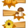 Set of wooden sign. Autumn banners — Stock Vector