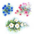 Watercolor flower — Stock Photo #11457812