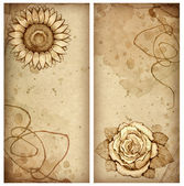 Background with pencil drawing of rose and sunflower — Stock Photo
