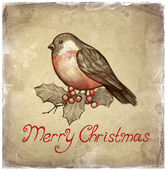 Christmas greeting card with illustration of bullfinch — Stock Photo