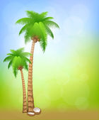 Background with palms — Cтоковый вектор