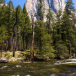 El Capitan, Yosemite — Stock Photo #11013789