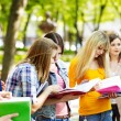 Group student with notebook outdoor. -  