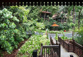 Health resort in green rainforest. — Stockfoto