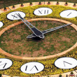 Flower clock in Kiev — Stock Photo