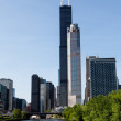 Stock Photo: Chicago skyline from river