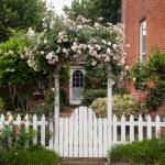 kır çiçekleri beyaz çitli üzerinde büyüyen — Stok fotoğraf