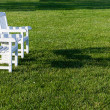 Pair of garden chairs on green lawn in garden — Stockfoto