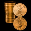 Reflection of one ounce gold coin black — Stock Photo