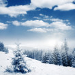 Winter — Stock Photo #11008612