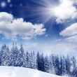 Winter — Stock Photo #11008648