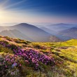 Mountain landscape — Stock Photo #11009021