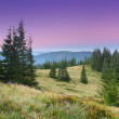Morning in mountains — Stock Photo