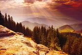 Sun rays — Foto Stock