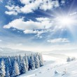 Winter — Stock Photo #11037943
