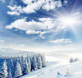 Zima — Zdjęcie stockowe