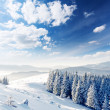 Winter - Foto Stock
