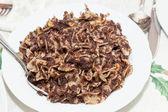Poppy seed pasta — Stock Photo